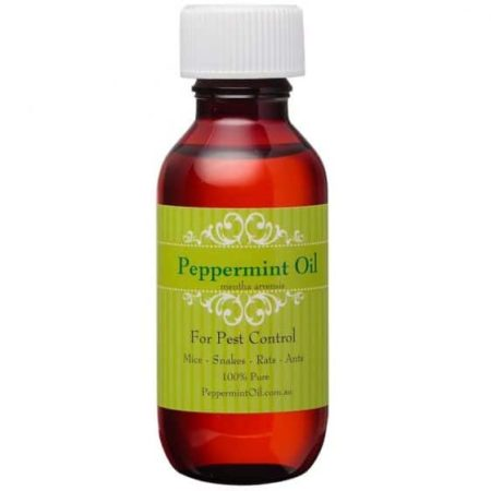 peppermintoil-100ml