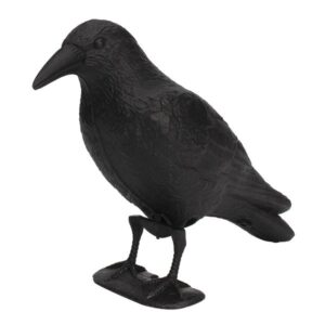 Black Crow Repellent Decoy