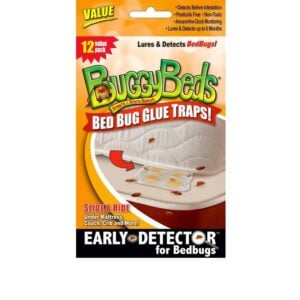 Bed Bug Glue Traps - Value pack